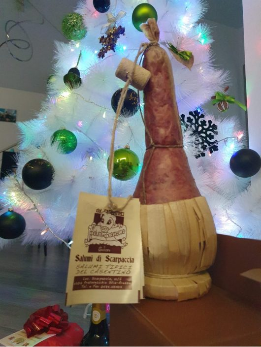 Ilaria festeggia il Natale in compagnia del nostro Gotto